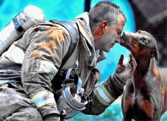 el bombero  y el perro