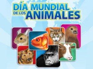dia-mundial-de-los-animales_-4-de-octubre
