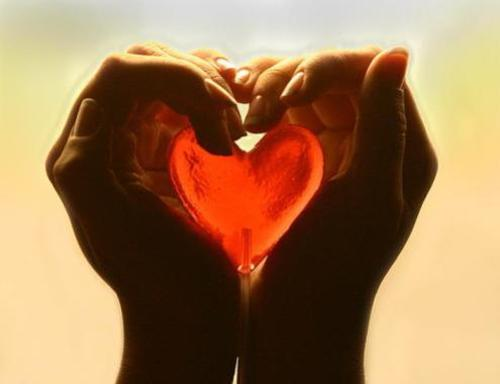 amor amar 2