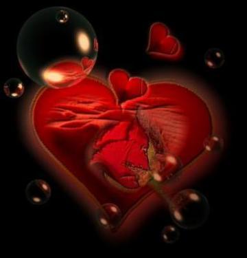 amor amar