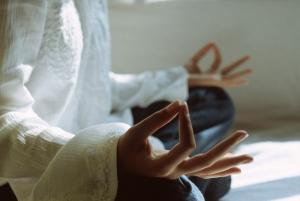 zen cotidiano de nuevo