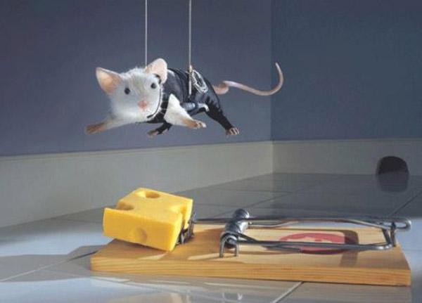 ratón-y-ratonera