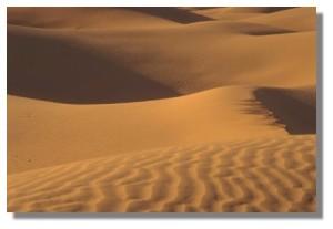 el llanto del desierto