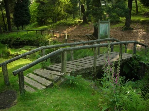 puente_de_madera